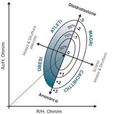 Bioimpedenzometria convenzionale ed analisi vettoriale